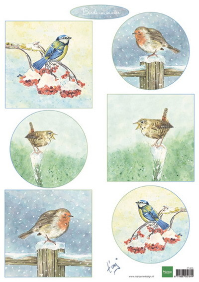 MD knipvel A4 Tiny's Birds in Winter