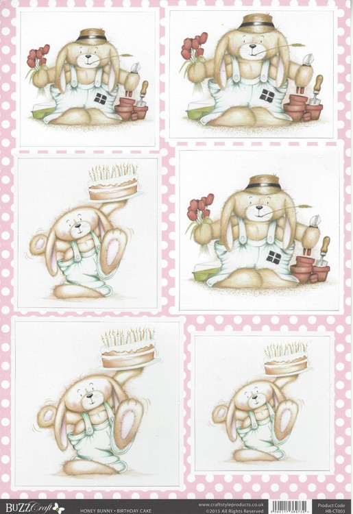 Buzz Craft A4 uitdrukvel - Honey Bunny - Birthday Cake