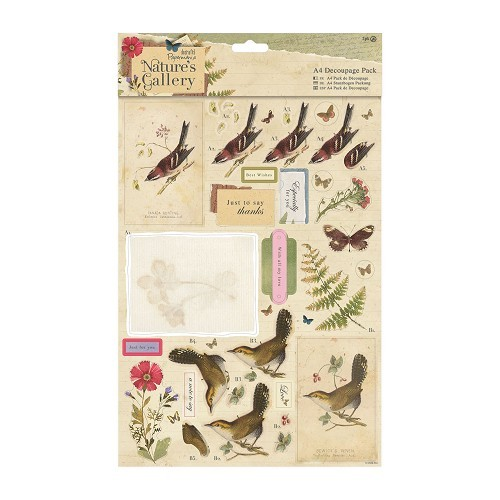 Docrafts A4 Decoupage Pack - Nature`s Gallery - Collage
